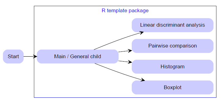 Using an R 'template' package to enhance reproducible research or the 'R package syndrome'